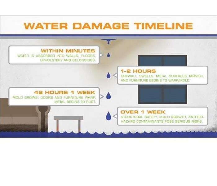 Why SERVPRO Water Damage Timeline!